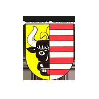 13° Crossmedia Agentur - Stadt Penzlin