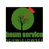 13° Crossmedia Agentur - Baumservice Schwielowsee